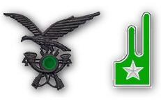 Settembre  sono soppressi il Battaglione Alpini d Arresto fregio e mostrina  alpini fanteria 199e4b4e2604